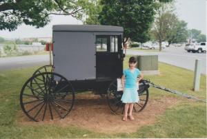 Amish 1