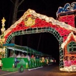 CHRISTMAS LIGHT DRIVE-THRUS