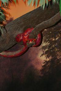 Creation Museum Evil Serpent