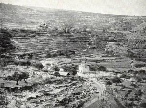Battir Bar Khokba