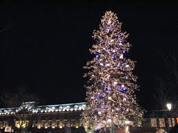 Strasbourg Christmas Tree (wikipedia.com)