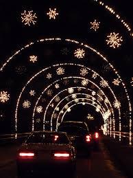 Magical Nights of Lights (lakelanier.com)