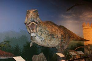 Creation Museum Dinosaur Exhibit
