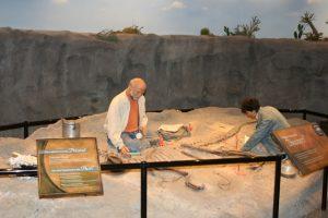Creation Museum Paleontologist Exhibit