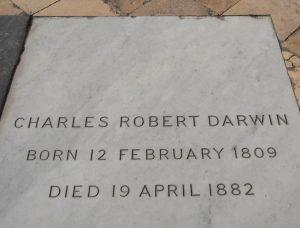 Grave of Charles Darwin Westminster Abbey (Wikimedia.com)
